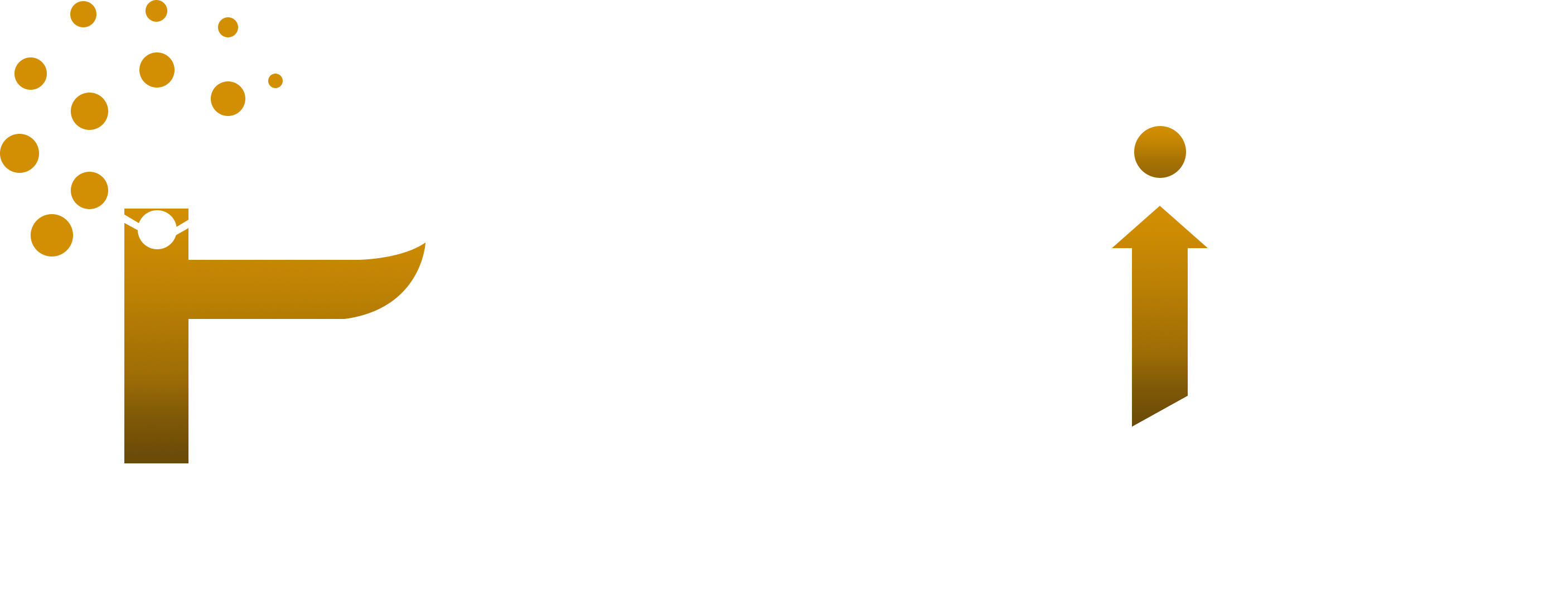 Logo of iPredict IT Solutions Pvt. Ltd.